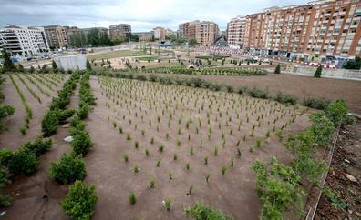 El nuevo parque sobre el soterramiento, ya reverdecido, está casi terminado