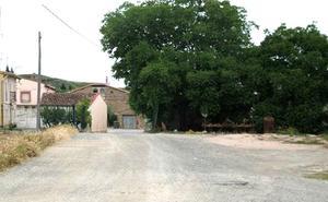 Del árbol de Ochánduri al bar de Autol y el contenedor de Munilla