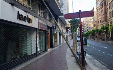La Guindilla: en Avenida de Portugal, árbol tumbado