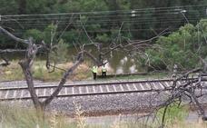 Restablecida la circulación ferroviaria en el tramo de Haro-Logroño