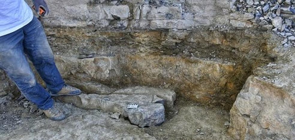La campaña 'Goliat' culmina con el hallazgo de 40 restos óseos de dinosaurio en Igea