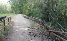 La Guindilla: un peligro para los ciclistas, junto al Iregua