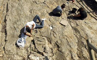 Un equipo de la UR estudia las huellas de dinosaurio para conocer cómo se movían en terreno blando