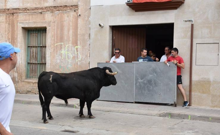 Encierro en Rincón de Soto