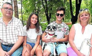 Un verano de perros