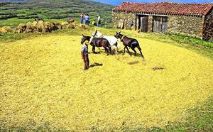 La memoria rural de López Osés