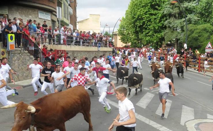 Día del Niño en las fiestas de San Roque y San Ezequiel en Alfaro
