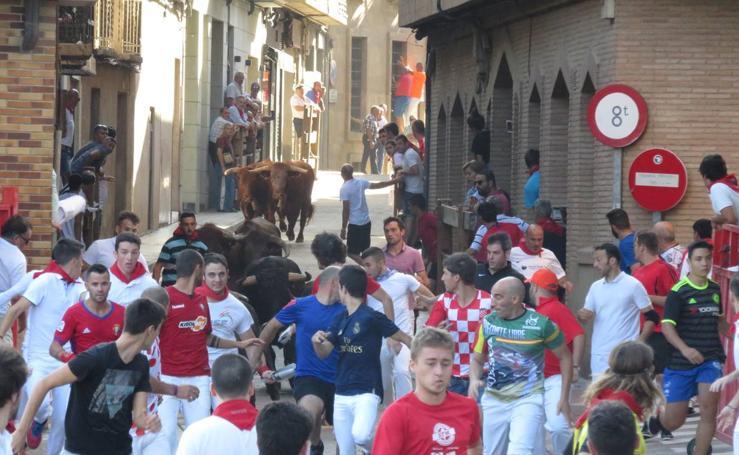 Alfaro llega al ecuador de sus fiestas de San Roque y San Ezequiel