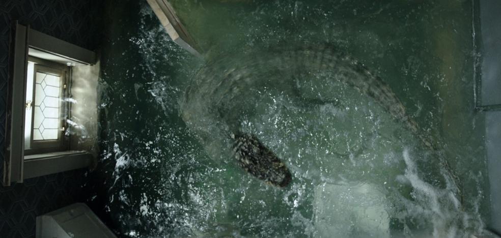 Invasión caimán: películas con cocodrilos asesinos