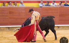Maestría total en Palencia