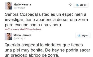 Los polémicos tuits de Herrera, que deja de ser concejal en Ciudad Real