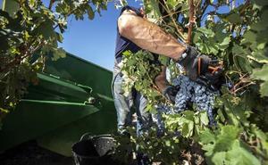 CCOO exige que el convenio vinícola se negocie antes de San Mateo