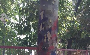 La Guindilla: árbol pintado en la calle Divino Maestro
