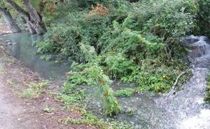 Aguas residuales en el parque del Iregua
