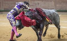 Herido por asta de toro el novillero Aquilino Girón en Arnedo
