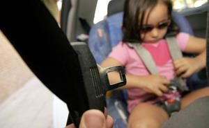 El 14% de los menores no lleva el cinturón en Alfaro, Calahorra, Logroño y Santo Domingo
