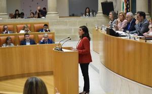 El Parlamento aprueba pedir que los vuelos a Madrid y Barcelona sean considerados servicio público