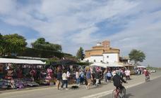 Alfaro celebra el día del Pilar