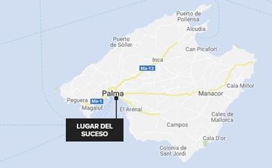Hallado un cadáver con mordiscos de perro en una vivienda de Palma de Mallorca