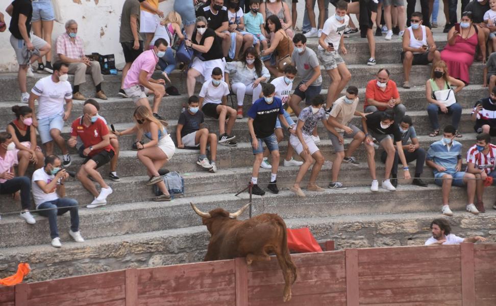La plaza de toros de Cervera abre sus puertas dos años después con un 'Especial Arriazu'