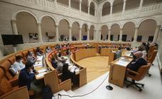 El Parlamento da un plazo de dos meses al Gobierno para recuperar la atención presencial sanitaria