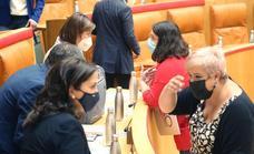 PSOE e IU 'alivian' a Romero sus incumplimientos en transparencia