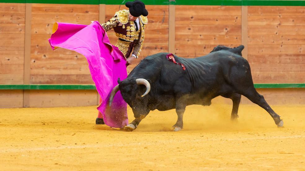 Las imágenes de la novillada de este domingo en Arnedo