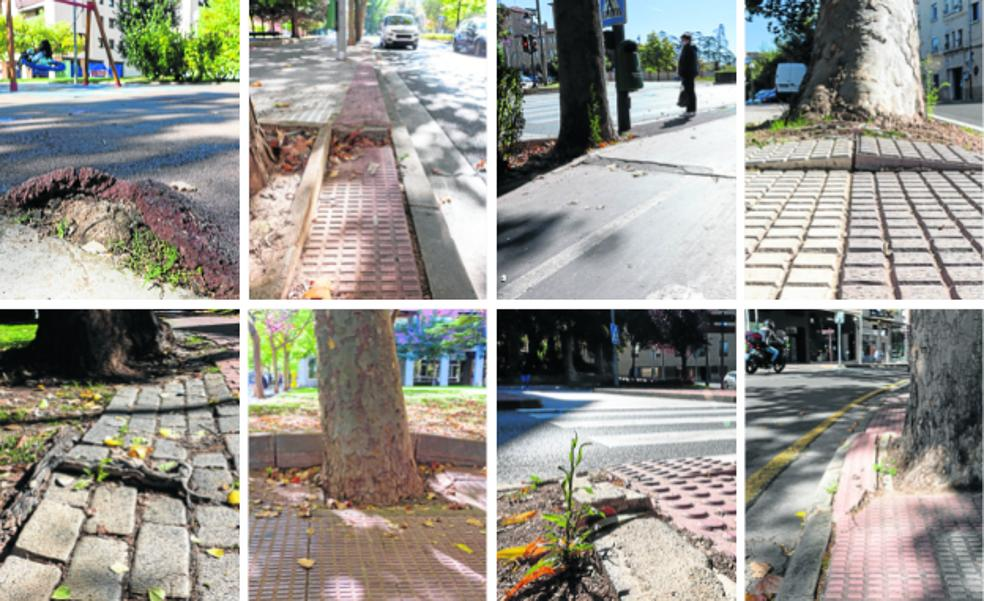 Un problema de raíces en Logroño
