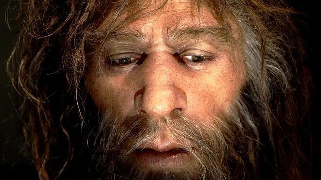 ¿Eran endogámicos los neandertales?