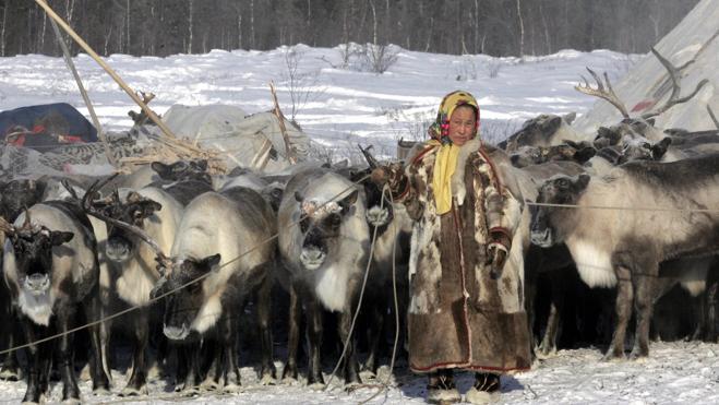 Un niño muerto y 86 personas hospitalizadas por un brote de ántrax en Siberia