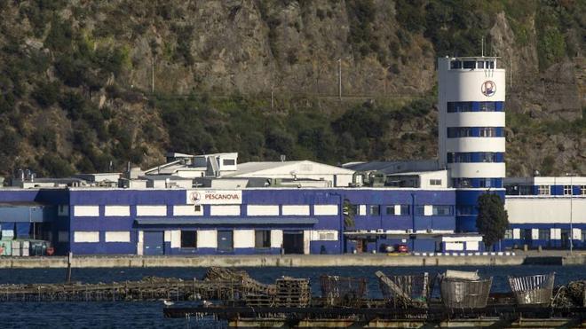 La 'vieja' Pescanova regresa a Bolsa con un desplome del 90%