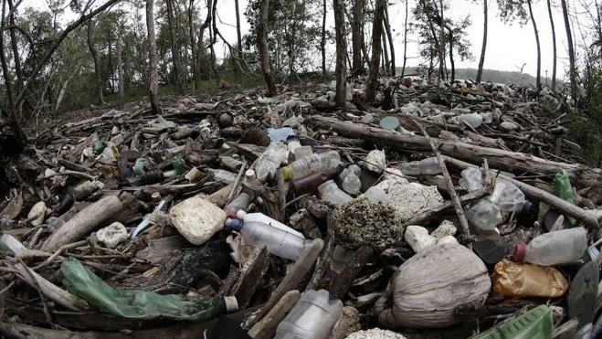 Producen plástico con azúcar y CO2, sin petróleo y biodegradable