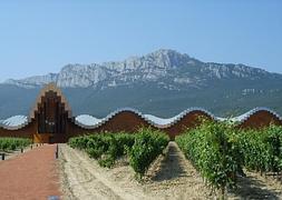La Bodega De Calatrava En Laguardia Tiene Goteras La Rioja