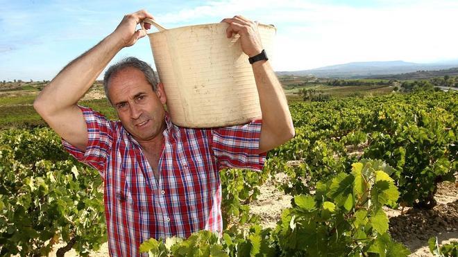 «El reto de Rioja ahora no es vender más, sino mejor»