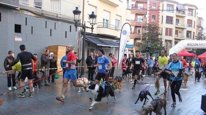 70 participantes en el Canicross de Arnedo