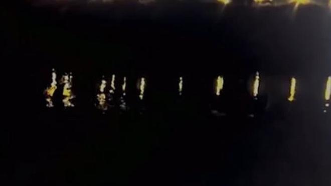 Un tiburón en el Ebro
