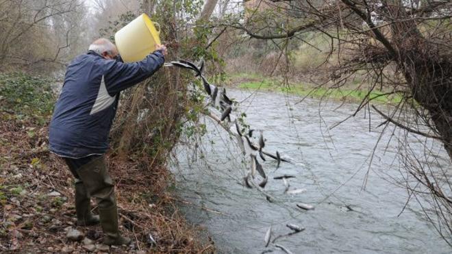 La pesca sin muerte en el coto intensivo, los lunes